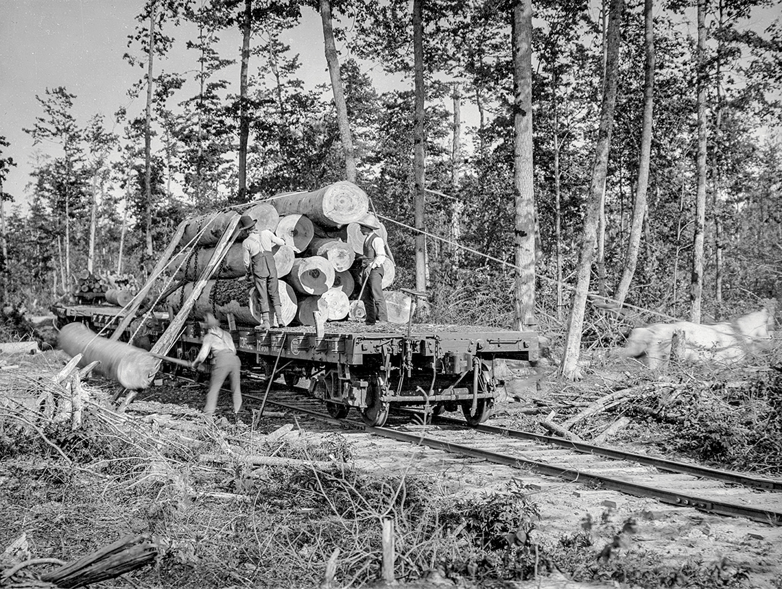 logging-wood-railroad